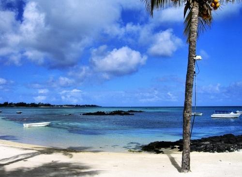 Mauritius #1