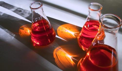 Chemie der Liebe